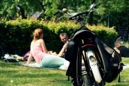 picnic vondel park Amsterdam